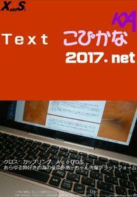 Textこぴかな2017.net