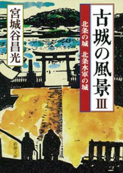 古城の風景III―北条の城 北条水軍の城―-電子書籍