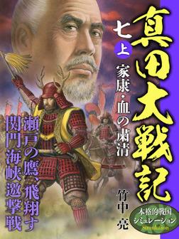 真田大戦記 七 上 家康・血の粛清-電子書籍