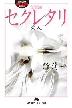 セクレタリ 愛人-電子書籍