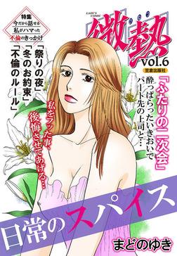 微熱vol.6 日常のスパイス-電子書籍
