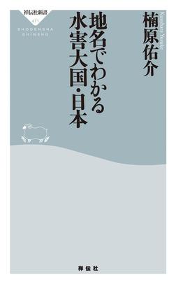 地名でわかる水害大国・日本-電子書籍