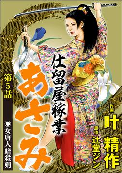 仕留屋稼業あさみ(分冊版) 【第5話】-電子書籍