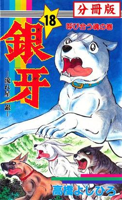 銀牙―流れ星 銀― 【分冊版】 18-電子書籍