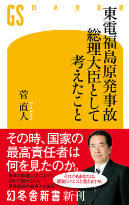 東電福島原発事故 総理大臣として考えたこと-電子書籍