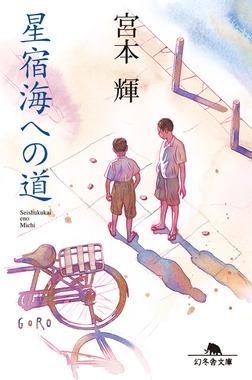 星宿海への道-電子書籍