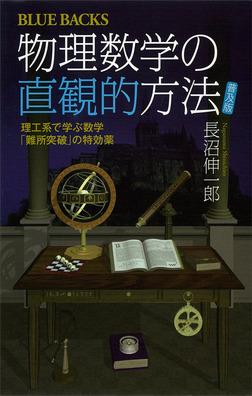 物理数学の直観的方法 〈普及版〉 理工系で学ぶ数学 「難所突破」の特効薬-電子書籍