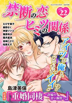 禁断の恋 ヒミツの関係 vol.22-電子書籍
