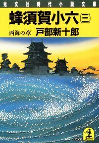 蜂須賀小六(三)~西海の章~