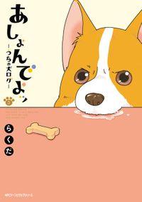 あしょんでよッ ~うちの犬ログ~ 3