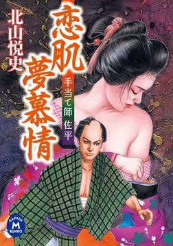 手当て師佐平 恋肌夢慕情-電子書籍