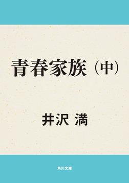 青春家族(中)-電子書籍