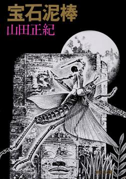 宝石泥棒-電子書籍