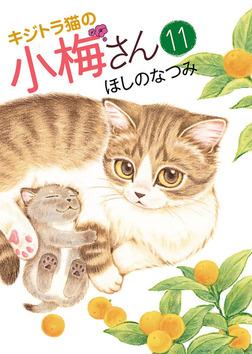 キジトラ猫の小梅さん(11)-電子書籍