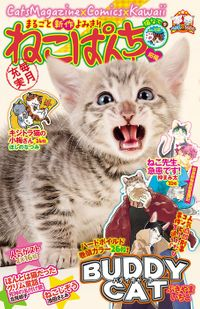 ねこぱんち 猫なで号 / No.158