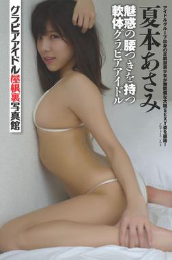 グラビアアイドル屋根裏写真館 : 2 夏本あさみ-電子書籍