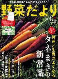 野菜だより2019年1月号