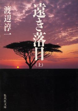 遠き落日 上-電子書籍
