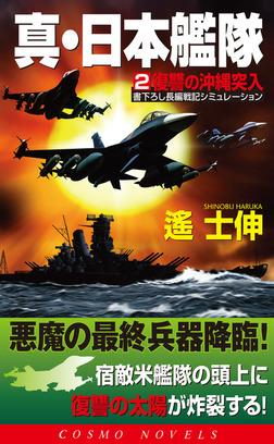 真・日本艦隊(2)復讐の沖縄突入-電子書籍