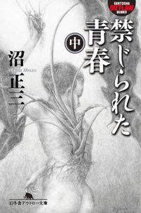 禁じられた青春(中)