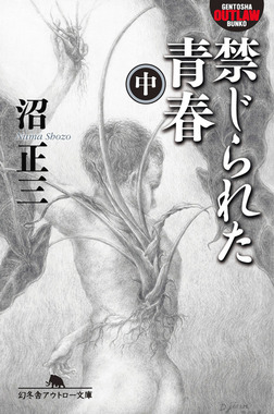 禁じられた青春(中)-電子書籍