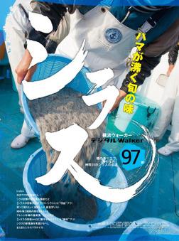 海の宝石! 神奈川のシラス名店 地元誌厳選97店-電子書籍