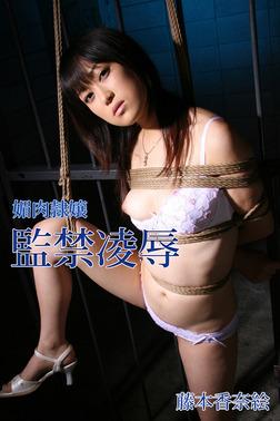 媚肉隷嬢 監禁凌辱 藤本香奈絵-電子書籍