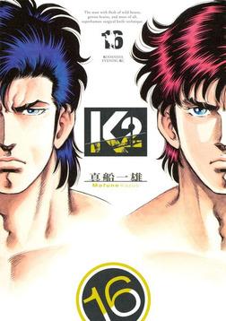 K2(16)-電子書籍
