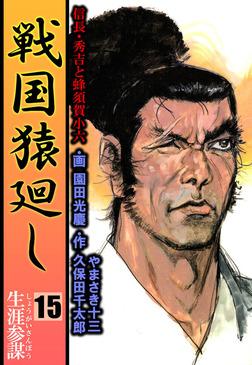 戦国猿廻し 信長・秀吉と蜂須賀小六 15-電子書籍