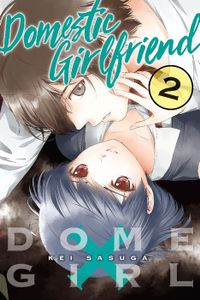 Domestic Girlfriend Volume 2