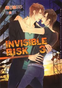 INVISIBLE RISK 3