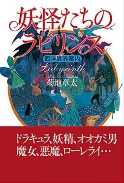 妖怪たちのラビリンス 西洋異界案内-電子書籍