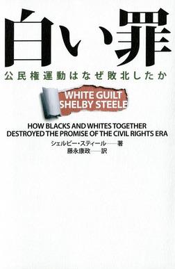 白い罪  公民権運動はなぜ敗北したか-電子書籍