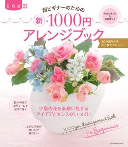 超ビギナーのための新・1000円アレンジブック-電子書籍