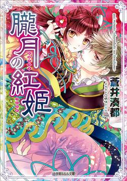朧月の紅姫-電子書籍