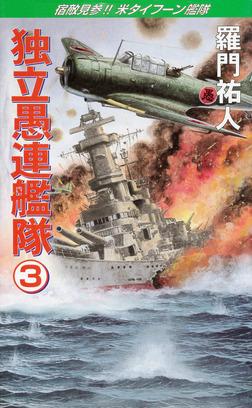 独立愚連艦隊 3 宿敵見参!!米タイフーン艦隊-電子書籍