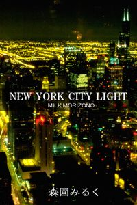 NEW YORK CITY LIGHT