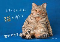 はしもとみお 猫を彫る(辰巳出版)