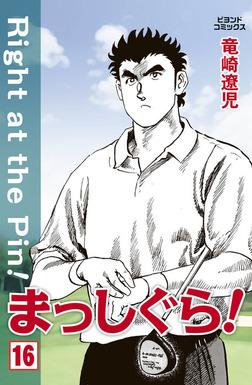 まっしぐら! 16-電子書籍