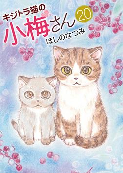 キジトラ猫の小梅さん / 20-電子書籍