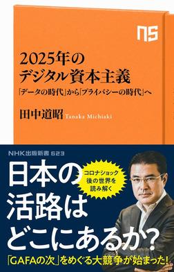 2025年のデジタル資本主義 「データの時代」から「プライバシーの時代」へ-電子書籍