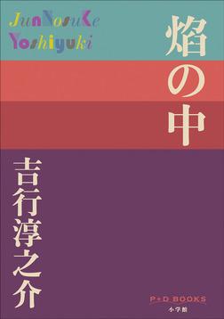 P+D BOOKS 焔の中-電子書籍