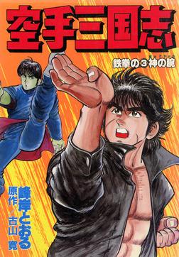 空手三国志 鉄拳の3-電子書籍