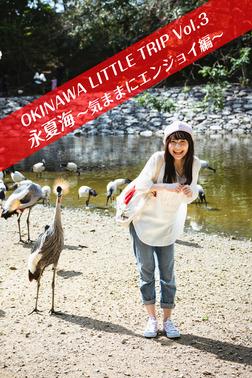 OKINAWA LITTLE TRIP Vol.3 永夏海 2 ~気ままにエンジョイ編~-電子書籍