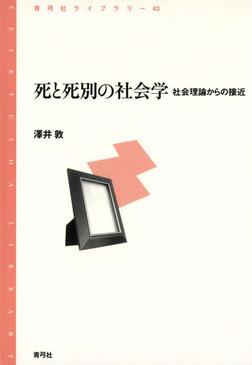死と死別の社会学 社会理論からの接近-電子書籍