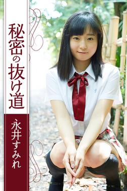 秘密の抜け道 永井すみれ-電子書籍
