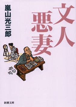 文人悪妻-電子書籍