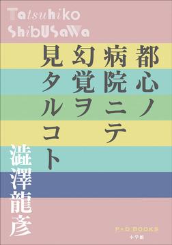 P+D BOOKS 都心ノ病院ニテ幻覚ヲ見タルコト-電子書籍