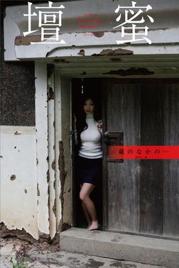 壇蜜 蔵のなかの・・・ 2011-2019 Premium archive デジタル写真集-電子書籍