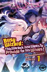 Busy Wizard: This Warlock Just Wants to Provide for his Wives! Vol. 1